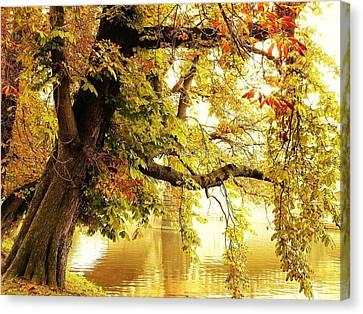 Autumn Canvas Print by Anna Duyunova