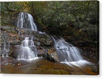 Autumn At Laurel Falls Canvas Print by Darrell Young