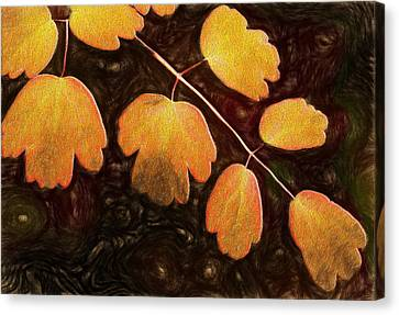 Canvas Print featuring the photograph Autumn Breeze by Paul Wear