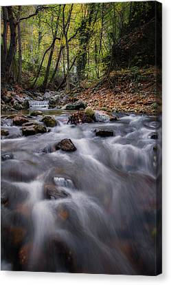 Autumn By The River Canvas Print