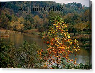 Autumn Colors Canvas Print by Gary Wonning