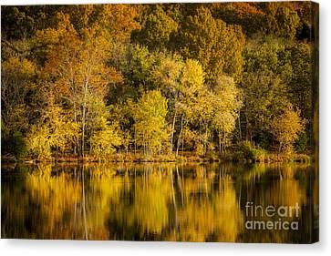 Radnor Canvas Print - Autumn Dawn by Brian Jannsen