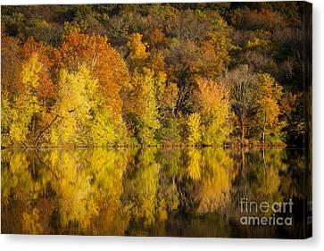 Radnor Canvas Print - Autumn Foliage by Brian Jannsen