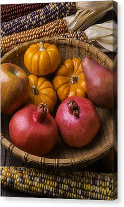 Autumn Harvest Basket  Canvas Print by Garry Gay
