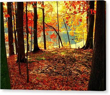 Autumn Lake Canvas Print by Aron Chervin