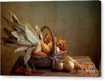 Autumn Canvas Print by Nailia Schwarz