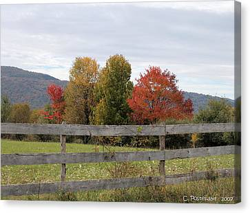 Autumn On Point Mountain Canvas Print