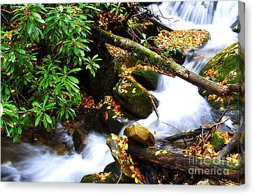 Autumn Serenity Canvas Print by Thomas R Fletcher
