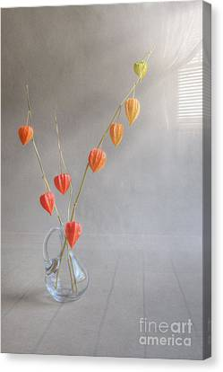 Autumn Still Life Canvas Print by Veikko Suikkanen