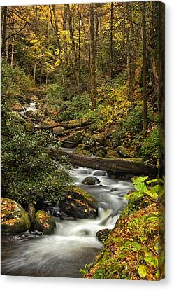 Rapids Canvas Print - Autumn Stream by Andrew Soundarajan
