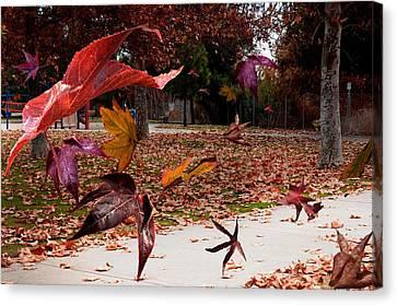 Autumn Wind Canvas Print by Richard Gordon