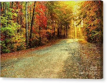 Autumns Path Canvas Print by Darren Fisher