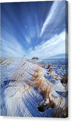 Canvas Print featuring the photograph Azure by Phil Koch