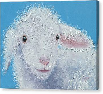 Baby Lamb Canvas Print by Jan Matson