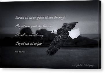 Bald Eagle In Flight With Bible Verse Canvas Print by John A Rodriguez