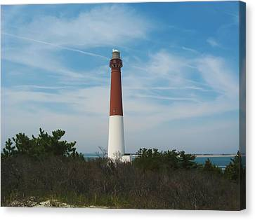 Barnegat Lighthouse - New Jersey Canvas Print by Bill Cannon