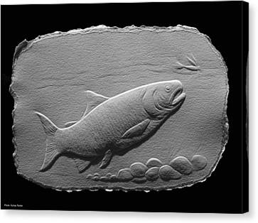 Canvas Print featuring the relief Bass Fish by Suhas Tavkar