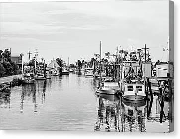 Bayou La Loutre Canvas Print by Scott Pellegrin