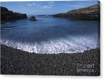 Beach At Point Lobos Canvas Print by Stan and Anne Foster