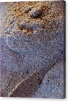 Beach Sand.  Canvas Print by Andy Za