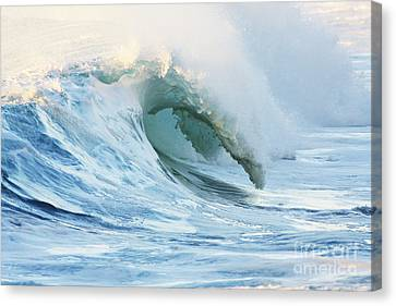 Beautiful Wave Breaking Canvas Print by Vince Cavataio - Printscapes