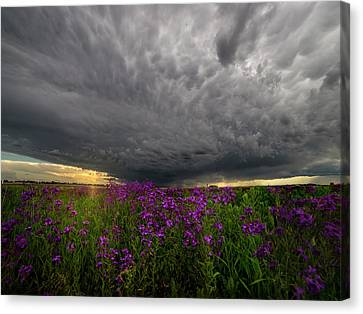 Beauty And The Beast Canvas Print by Aaron J Groen