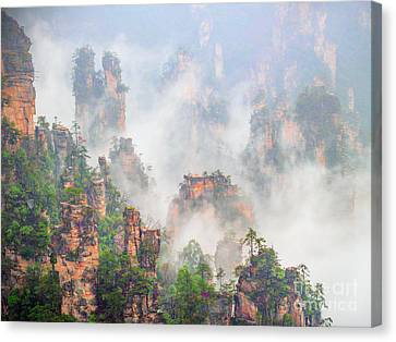Beauty In Nature Canvas Print by PuiYuen Ng