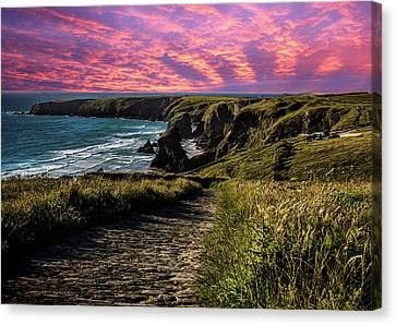 Bedruthan Cornwall Canvas Print by Martin Newman