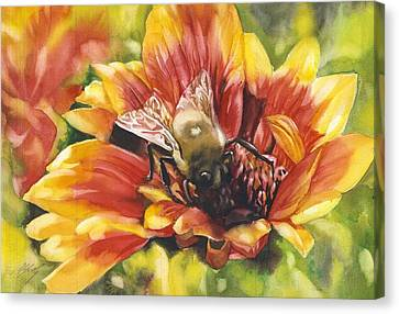 Bee In A Blanket Canvas Print by Alfred Ng