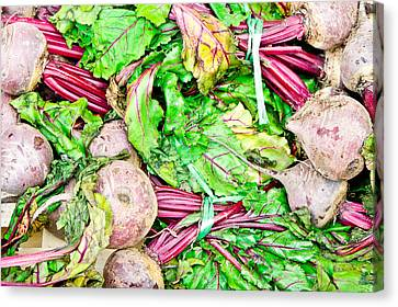 Beetroot Canvas Print by Tom Gowanlock