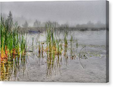 Fish Pond Canvas Print - Before The Bite by Naman Imagery