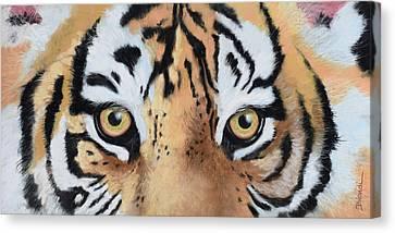 Bengal Eyes Canvas Print