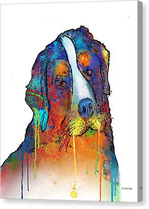 Dogs Canvas Print - Bernese Mountain Dog by Marlene Watson