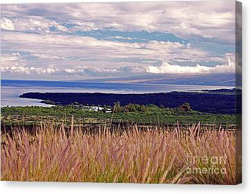 Big Island Landscape 1 Canvas Print