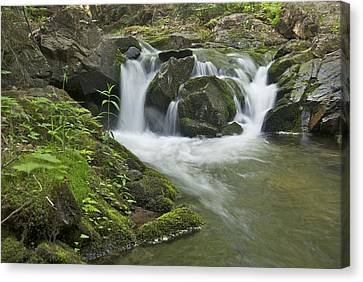 Big Pup Falls 3 Canvas Print by Michael Peychich