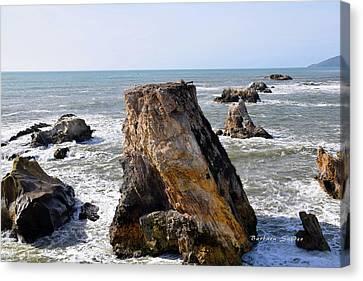 Big Rocks In Grey Water Canvas Print by Barbara Snyder