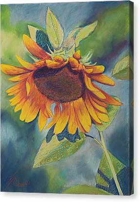 Big Sunflower Canvas Print by Billie Colson