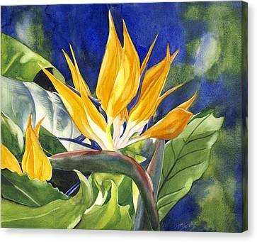 Bird Of Paradise  Canvas Print by Alfred Ng