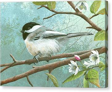 Black Cap Chickadee Canvas Print by Mike Brown