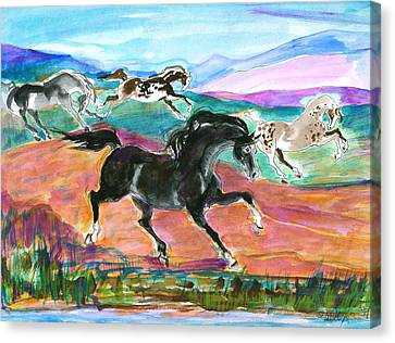 Black Pony Canvas Print by Mary Armstrong
