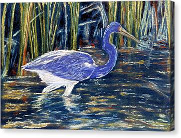 Canvas Print featuring the pastel Blue Heron by Jan Amiss