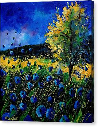 Blue Poppies  Canvas Print by Pol Ledent