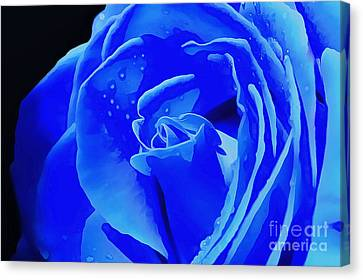 Blue Romance Canvas Print by Krissy Katsimbras