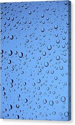 Blue Water Bubbles Canvas Print by Frank Tschakert