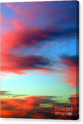 Blushed Sky Canvas Print by Linda Hollis