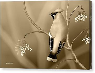 Canvas Print featuring the digital art Bohemian Waxwing In Sepia by John Wills