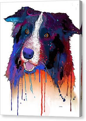 Border Collie Canvas Print by Marlene Watson