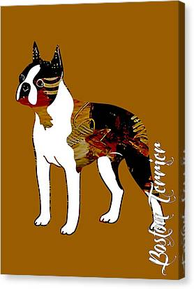 Boston Terrier Collection Canvas Print by Marvin Blaine