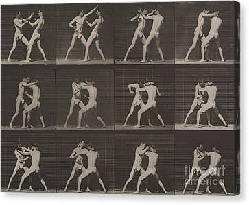 Boxing Canvas Print by Eadweard Muybridge