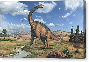 Brachiosaurus Dinosaur Canvas Print by Joe Tucciarone